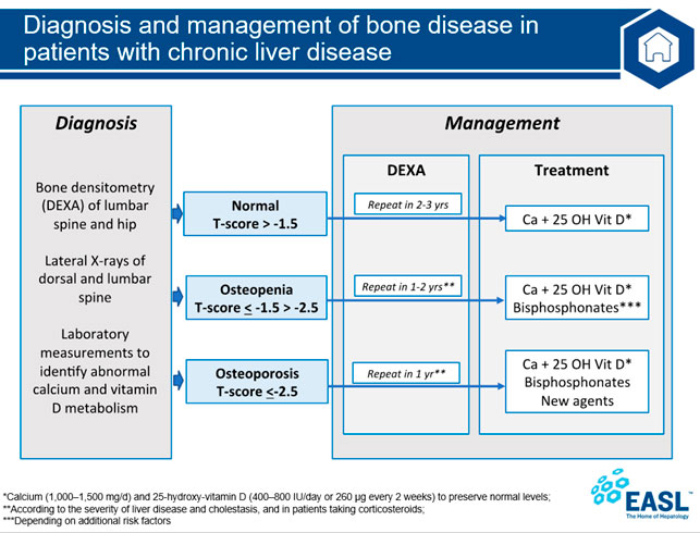 Сучасні підходи до терапії остепенії та остеопорозу у хворих з хронічними захворюваннями печінки. Рекомендації EASL.